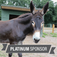 Sponsor DAISY - Platinum Package £35 (printed pack)